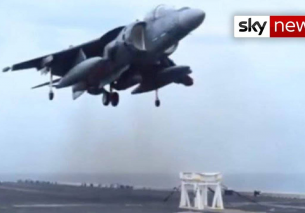 Harrier landing on a Stool